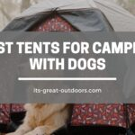 15 Best Tents for Camping with Dogs in 2021